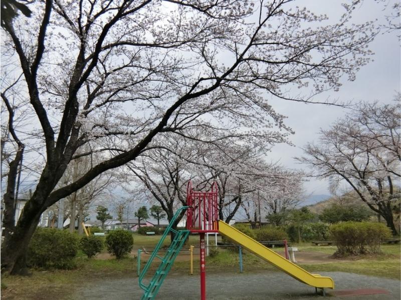 Photo_388