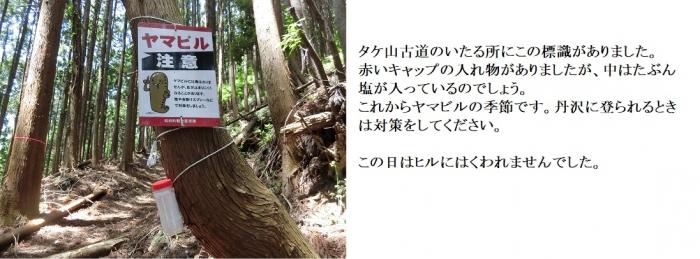 Photo_20200517162101
