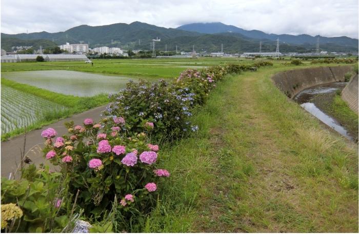 Photo_20200613185201