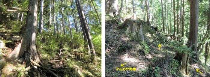 Photo_20201014093201